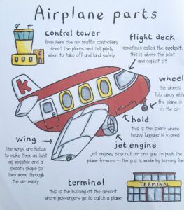 learn-the-airplane-parts